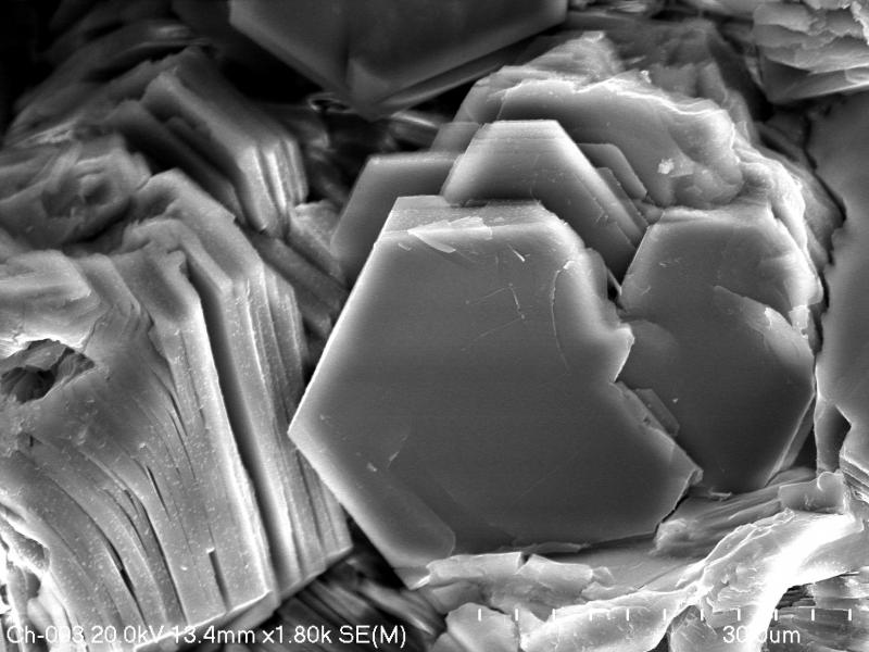 Chlorite (Fe-rich)